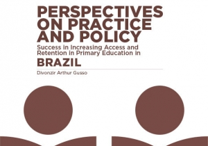 Perspectives on Practice and Policy - BRAZIL